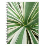 Agave Plant Green and White Stripe Spiral Notebook