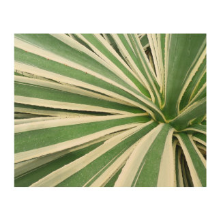 Agave Plant Green and White Stripe Wood Wall Art