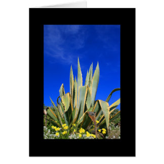 Agave Plant Greeting Card and Note Card
