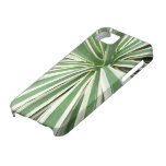 Agave Plant Iphone 5 Case-mate Case