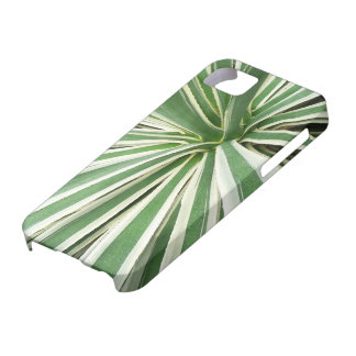 Agave Plant Iphone 5 Case-mate Case iPhone 5 Cases
