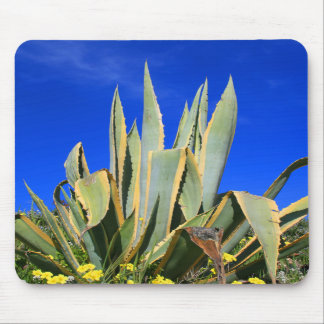 Agave Plant Mousepad