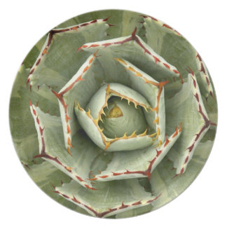 Agave plate