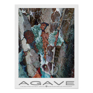 Agave Plume Poster