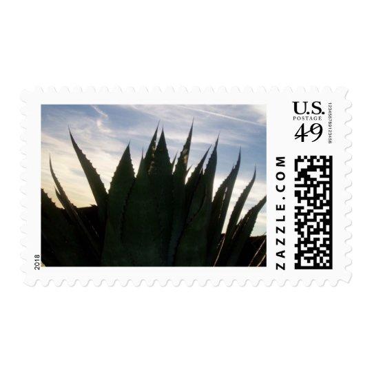 Agave Skyrockets Stamps