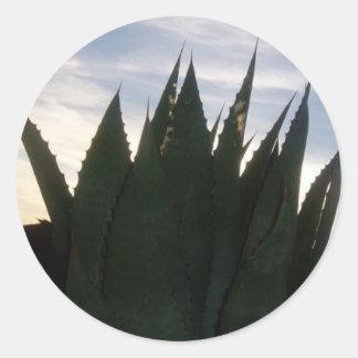 Agave Skyrockets Sticker