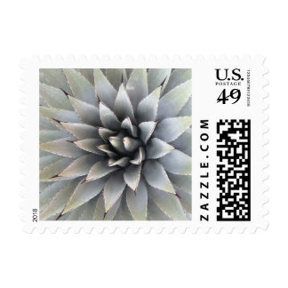"""Agave - Small, 1.8"""" x 1.3"""", $0.49 (1st Class 1oz) Postage Stamp"""