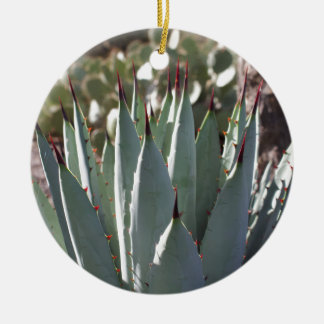 Agave Spikes Ceramic Ornament