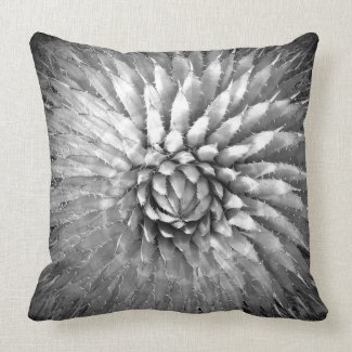 Agave Spikes Square Pillow Black and White B&W
