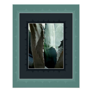 Agave tequilana - blue agave poster