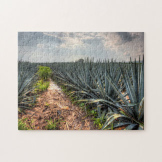 Agave Tequilana Jigsaw Puzzle
