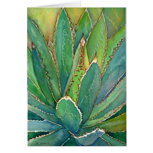 Agave watercolor notecard greeting cards