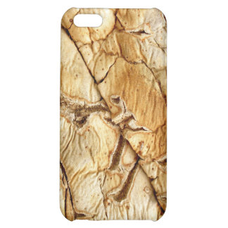 Agavenholz Case For iPhone 5C