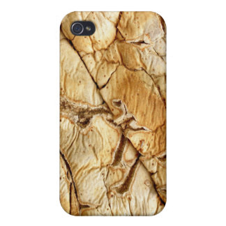 Agavenholz iPhone 4/4S Covers