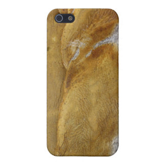 AgaveWood iPhone 5 Case