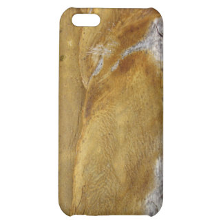 AgaveWood iPhone 5C Cover