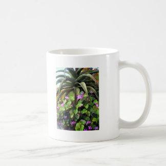 Agavo y violetas africanas tazas de café