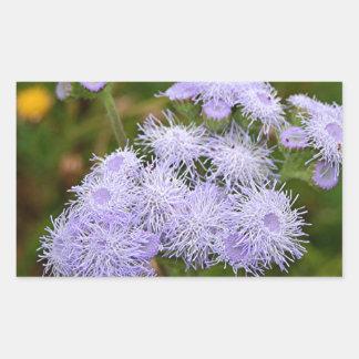 Ageratum flower in bloom rectangular sticker