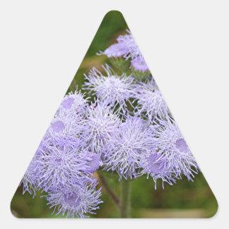 Ageratum flower in bloom triangle sticker