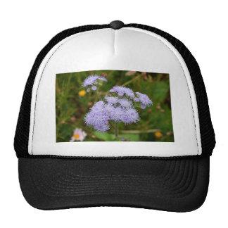 Ageratum flower in bloom trucker hat