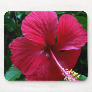 Aggelikis Dark Pink Hibiscus Design Mouse Pad