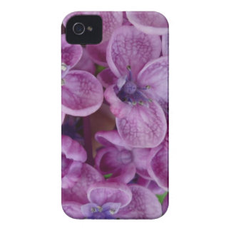 Aggelikis Purple Flowers Design iPhone 4 Cover
