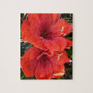 Aggelikis Red Lillies Puzzle