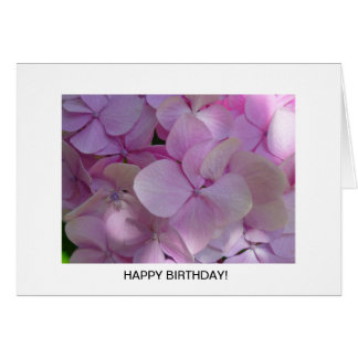 Aggelikis Soft Pink Hydrangea Flower Greeting Card