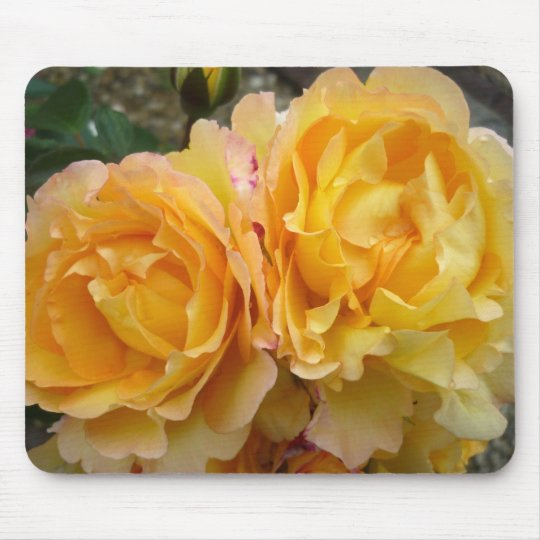 Aggelikis Yellow Roses Mouse Pad