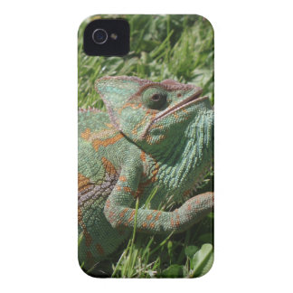 Aggressive Chameleon Blackberry Bold Case