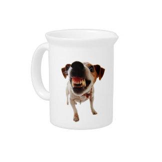 Aggressive dog - angry dog - funny dog pitcher
