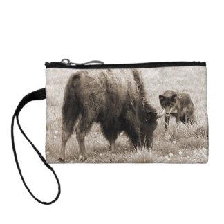 Aggressive wolf hunting bison change purse