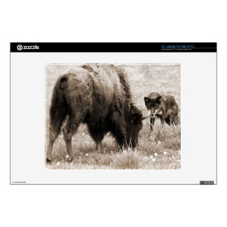 "Aggressive wolf hunting bison decals for 12"" laptops"