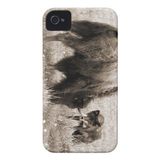 Aggressive wolf hunting bison iPhone 4 case