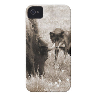 Aggressive wolf hunting bison iPhone 4 covers