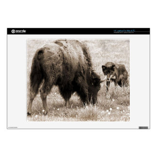 Aggressive wolf hunting bison laptop skins