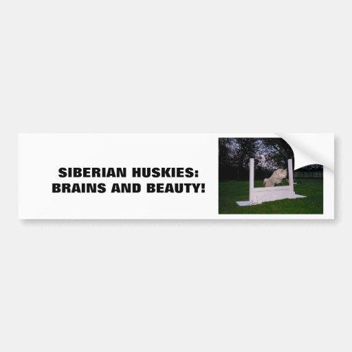 Agilidad del husky siberiano pegatina para auto