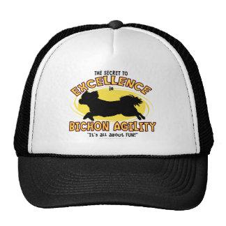 Agility Bichon Frise Secret Hat