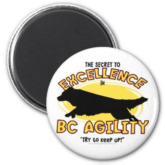 Agility Border Collie Secret Magnet
