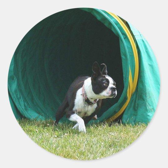 Agility Boston Terrier Classic Round Sticker