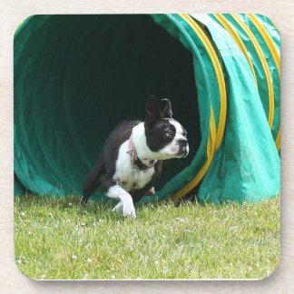 Agility Boston Terrier Drink Coaster