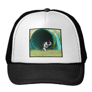 Agility Boston Terrier Trucker Hat