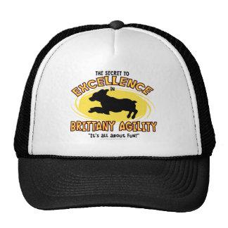 Agility Brittany Spaniel Secret Hat