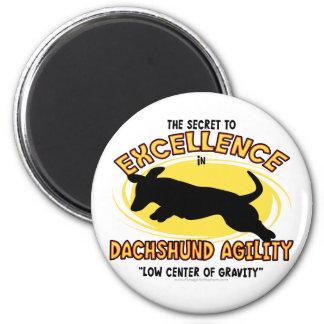 Agility Dachshund Secret Magnet