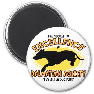 Agility Dalmatian Secret Magnet