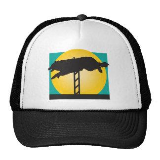 Agility Dog Hat
