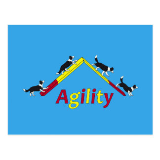 Agility dog postcard