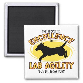Agility Labrador Retriever Secret Magnet