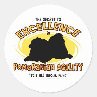 Agility Pomeranian Secret Classic Round Sticker