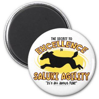 Agility Saluki Secret Magnet